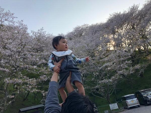 壱桜李君、1歳になりました。